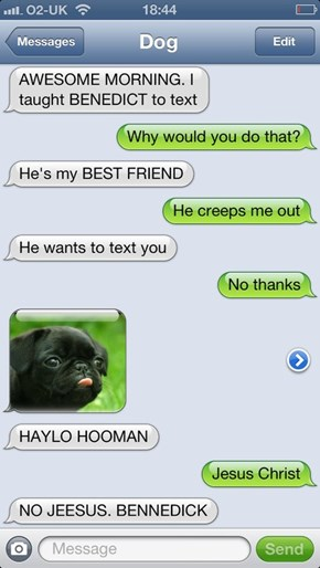 HAYLO HOOMAN