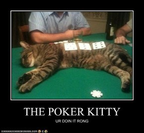 THE POKER KITTY