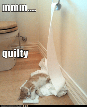 mmm.... quilty