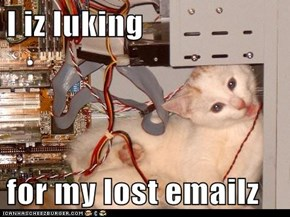 I iz luking  for my lost emailz