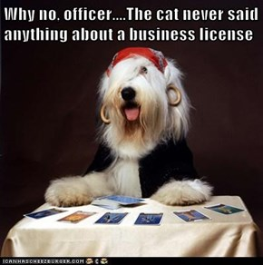 Why no, officer....The cat never said anything about a business license