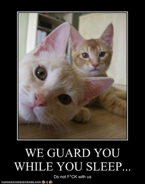WE GUARD YOU WHILE YOU SLEEP...
