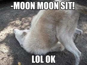 Meet Moon Moon