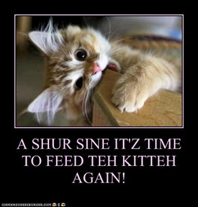 A SHUR SINE IT'Z TIME TO FEED TEH KITTEH AGAIN!
