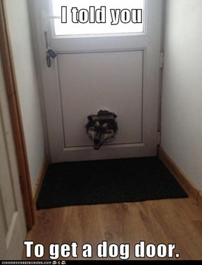 I told you  To get a dog door.