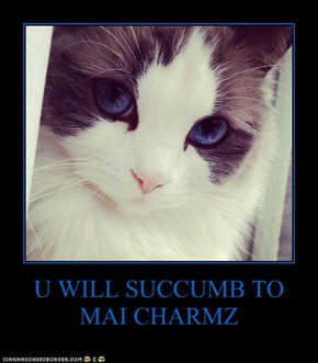 U WILL SUCCUMB TO MAI CHARMZ