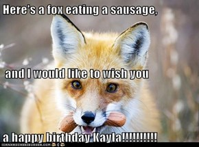 Here's a fox eating a sausage,  and I would like to wish you a happy birthday Kayla!!!!!!!!!!