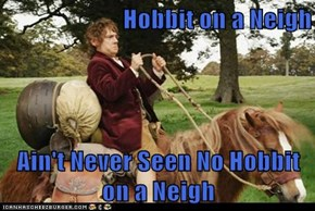 Hobbit on a Neigh  Ain't Never Seen No Hobbit on a Neigh
