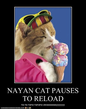 NAYAN CAT PAUSES TO RELOAD