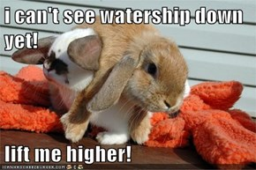 i can't see watership down yet!  lift me higher!