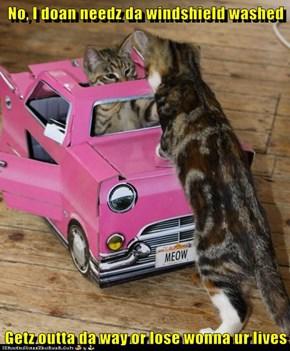 No, I doan needz da windshield washed  Getz outta da way or lose wonna ur lives