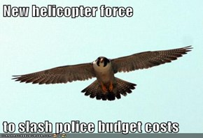 New helicopter force  to slash police budget costs