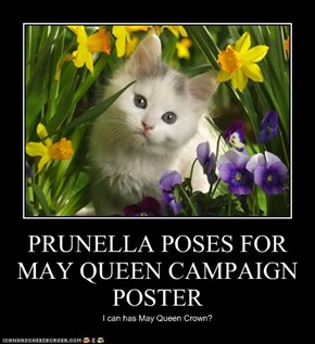 PRUNELLA POSES FOR MAY QUEEN CAMPAIGN POSTER