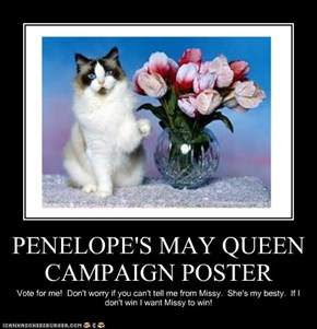 PENELOPE'S MAY QUEEN CAMPAIGN POSTER