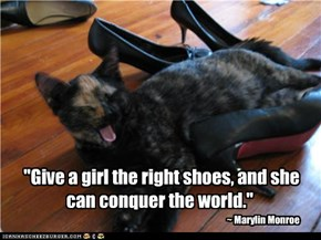"""Give a girl the right shoes, and she can conquer the world."""
