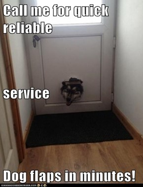 Call me for quick reliable  service Dog flaps in minutes!