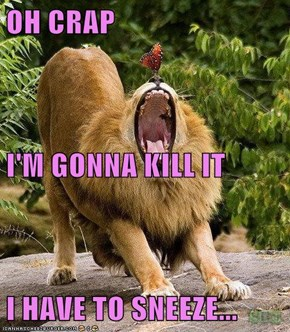 OH CRAP I'M GONNA KILL IT I HAVE TO SNEEZE...