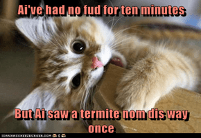 Ai've had no fud for ten minutes  But Ai saw a termite nom dis way once