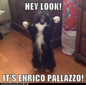 HEY LOOK!  IT'S ENRICO PALLAZZO!