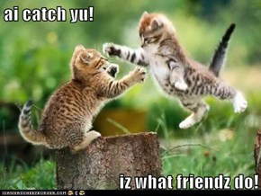ai catch yu!  iz what friendz do!