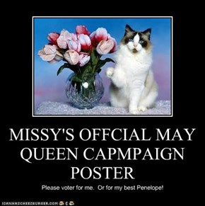 MISSY'S OFFCIAL MAY QUEEN CAPMPAIGN POSTER