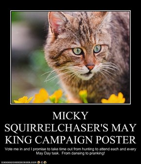 MICKY SQUIRRELCHASER'S MAY KING CAMPAIGN POSTER