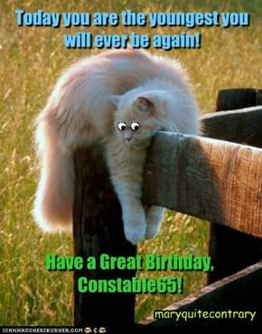 a lil bit depressin, huh? :)