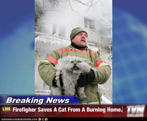 Breaking News - Firefigher Saves A Cat From A Burning Home.