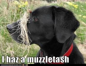 I haz a muzzletash