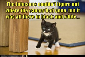 The Johnsons couldn't figure out where the canary had gone, but it was all there in black and white...