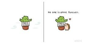 Find Your Cactus