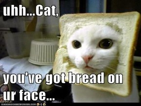 uhh...Cat,   you've got bread on ur face...