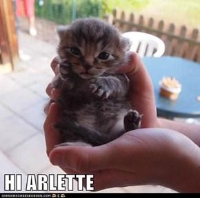 HI ARLETTE
