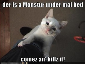 der is a Monstur under mai bed  comez an' killz it!