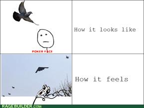 Pigeon Bombarder