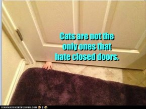 Cats are not the only ones that hate closed doors.