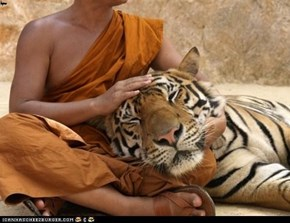 A monk and his tiger
