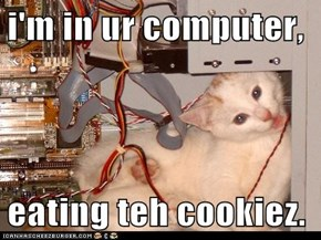 i'm in ur computer,  eating teh cookiez.