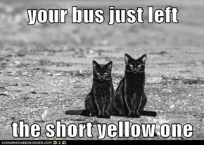 your bus just left  the short yellow one