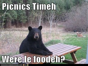 Picnics Timeh   Were le foodeh?