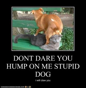 DONT DARE YOU HUMP ON ME STUPID DOG