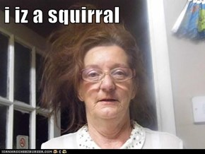 i iz a squirral