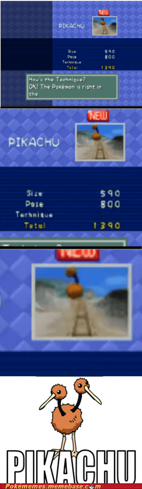 Go Home Pokemon Snap, You're Drunk