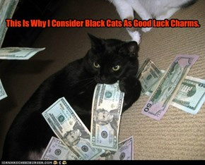 This Is Why I Consider Black Cats As Good Luck Charms.