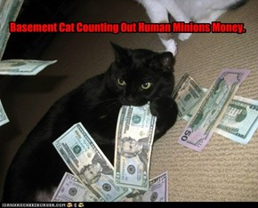 Basement Cat Counting Out Human Minions Money.