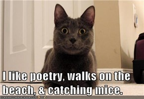 I like poetry, walks on the beach, & catching mice.