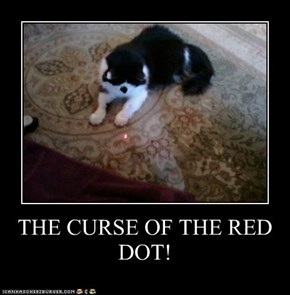 THE CURSE OF THE RED DOT!