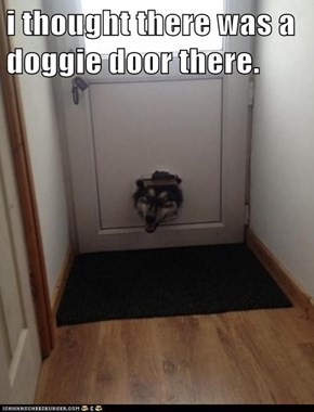 i thought there was a doggie door there.