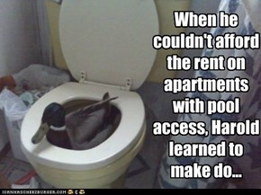 When he couldn't afford the rent on apartments with pool access, Harold learned to make do...
