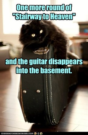 Basement Cat leads you to reason.